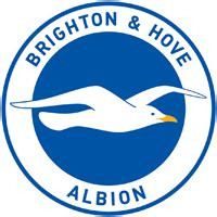 Brighton & Hove Albion FC News, Fixtures & Results 2019
