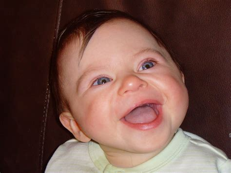 Phases of the Mooniers: Learning about Williams Syndrome