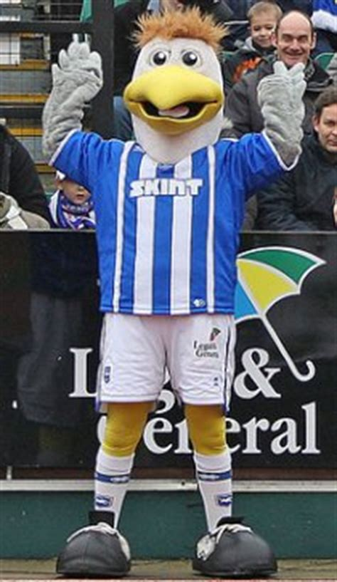 Football Mascots: Brighton and Hove Albion, Gully the Seagull